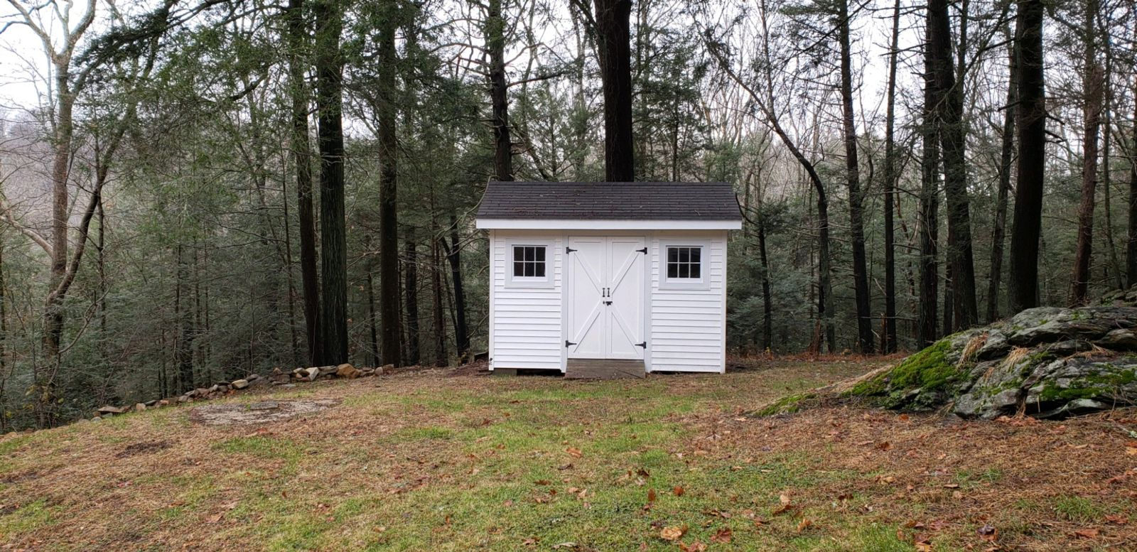 White shed in woods